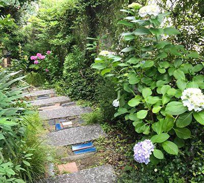 季節を感じる美しい庭
